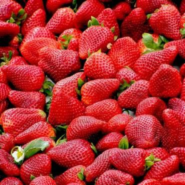 La fresa, fruta de temporada
